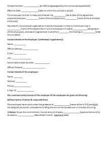 consultation contract template