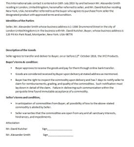 internation contract template